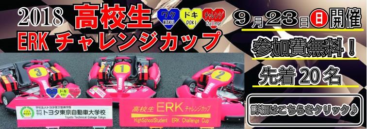 ERK2018